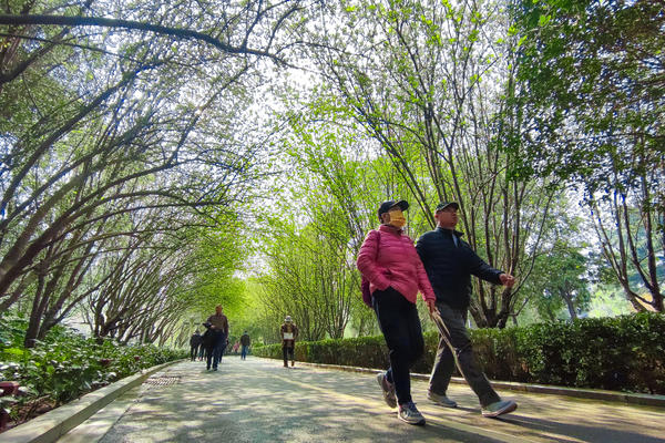 赏花踏青正当时 本周末碧沙岗公园海棠进入最佳观赏期