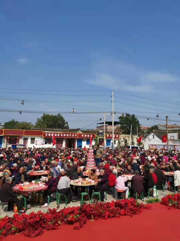 """重阳节河南这个村""""放大招""""!全村996位老人同吃重阳宴"""