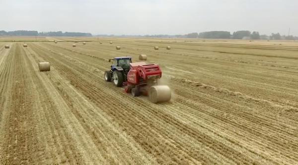河南完成麦收面积近三分之二 小麦品质结构持续优化