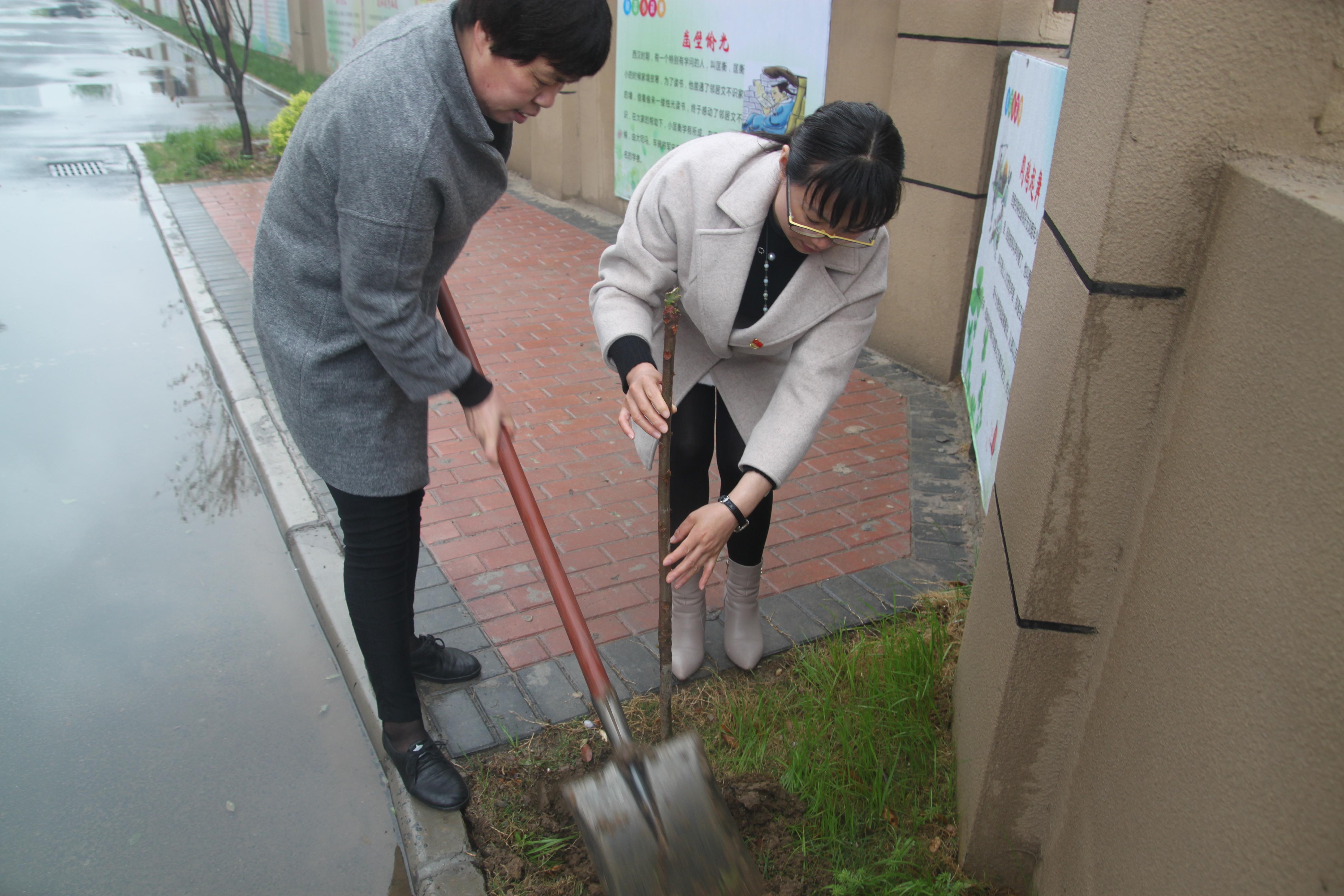 2   扶苗 培土