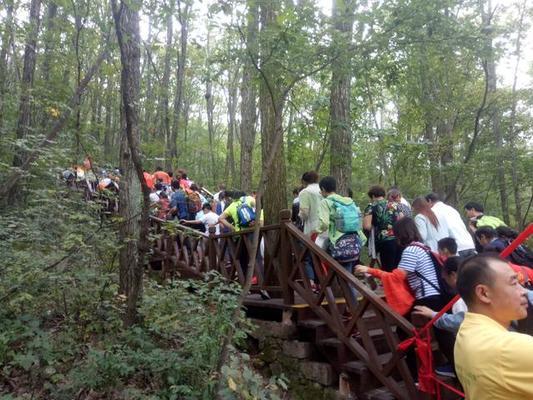 """河南省""""三山同登""""群众登山健身大会在内乡宝天曼隆重举行"""