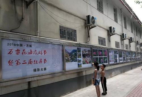 """pk10高手论坛交流区:""""2018中国・方城万亩花海旅游节""""摄影大赛橱窗展开展"""