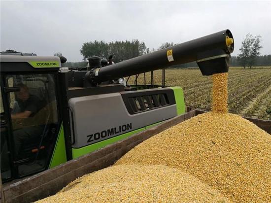 玉米籽粒收获