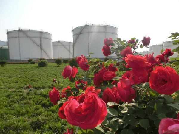 """中国石化河南郑州石油举行""""公众开放日"""":零距离感受70载油库的生机和魅力"""