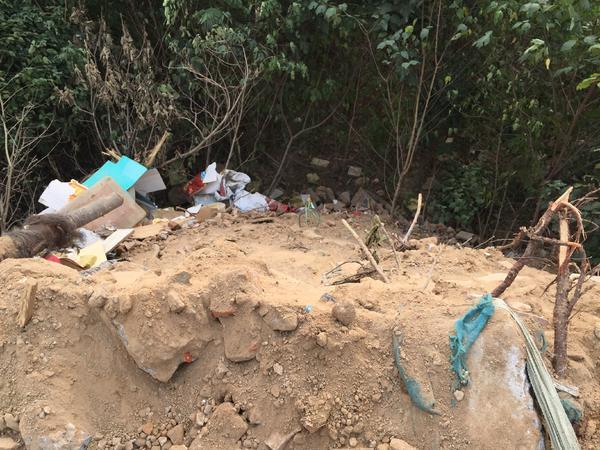 郑州市中原区冯湾村:十几车渣土倒进深沟,沟底果木被压埋