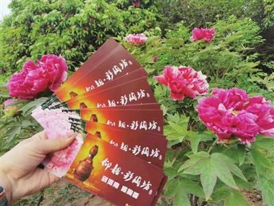 彩陶坊携手七大牡丹园为牡丹文化节添彩